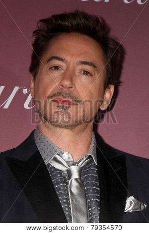 LOS ANGELES - JAN 3:  Robert Downey Jr. at the Palm Springs Film Festival Gala at a Convention Center on January 3, 2014 in Palm Springs, CA