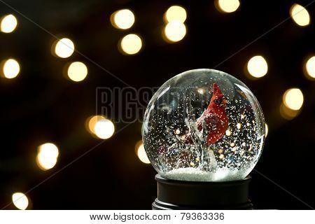Christmas Cardinal Snowglobe