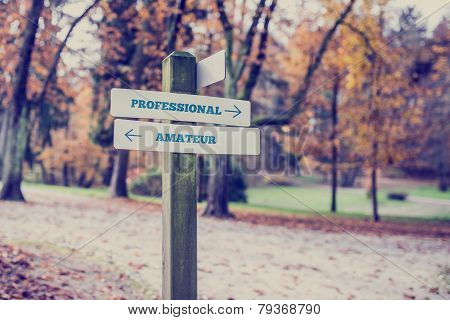 Rustic Wooden Sign In An Autumn Park With The Words Professional - Amateur
