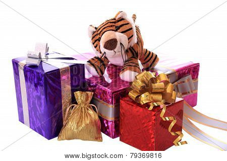 New-year tiger cub with gifts.