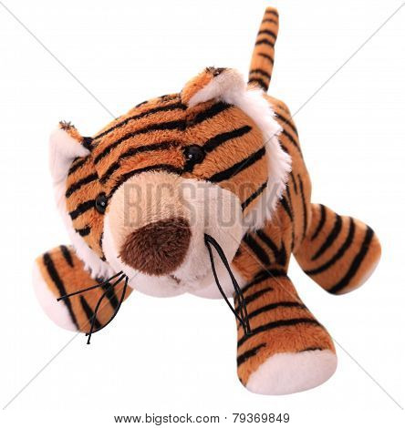 New-year tiger cub.