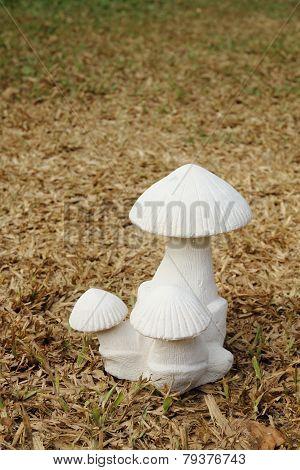 Mushroom Sculpture On Dry Turf 2