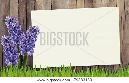 Old Wooden Fence And Grass, Flowers.