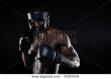 Young Male Boxer In A Fighting Stance