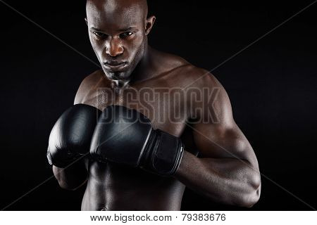 Powerful Fighter Ready For Fight