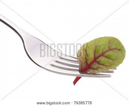 Fresh mangold or chard salad on fork isolated on white background cutout. Healthy eating concept.