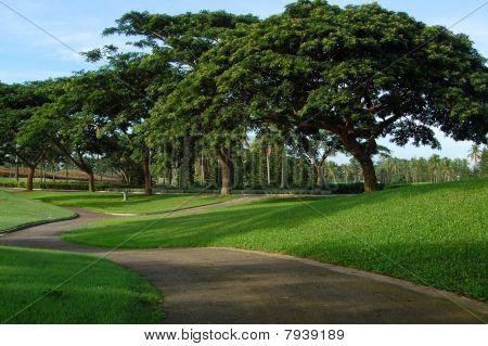 Mount Malarayat Golf Course