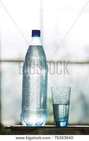 Glass Of Water And Bottle With Mineral Water On The Table