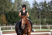 stock photo of chestnut horse  - Portrait of woman with helmet riding chestnut horse - JPG