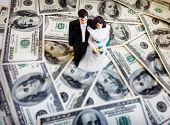 picture of plastic money  - bride and groom wedding couple on money - JPG