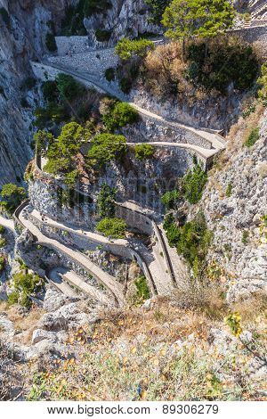 Twisty Road On Capri Island