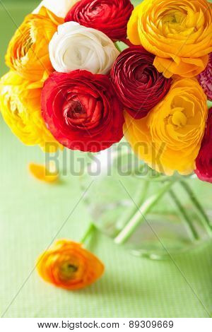 colorful ranunculus flowers in vase over green background
