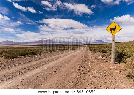 A lama sign in the desert of bolivia
