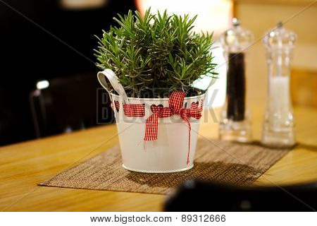 pot with herbs