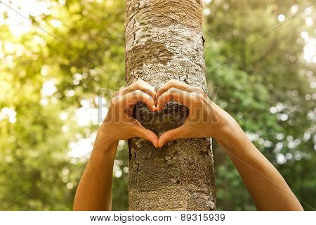 Love and protect nature