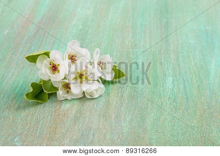 Apple Blossom, Cherry Flowers On A Turquoise Background