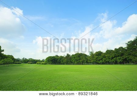 Beautiful Green Grass Field And Fresh Plant In Vibrant Meadow Against White Cloud On Blue Sky Use As