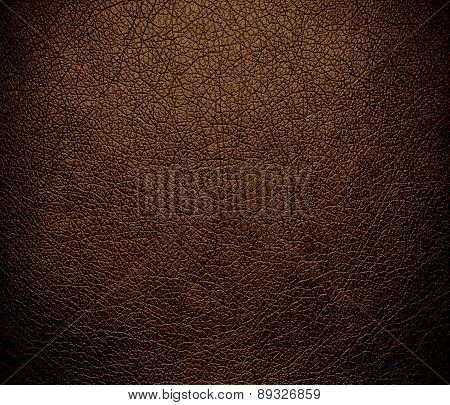 Brown-nose color leather texture background