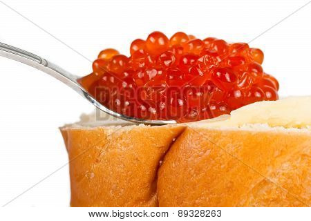 Red caviar on the butter