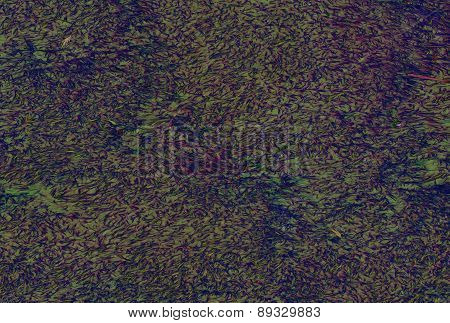 Abstract background  with natural texture  and multiple colors