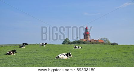 Bastorf,baltic Sea,Germany
