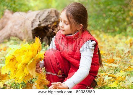 Bouquet Of Autumn Leaves