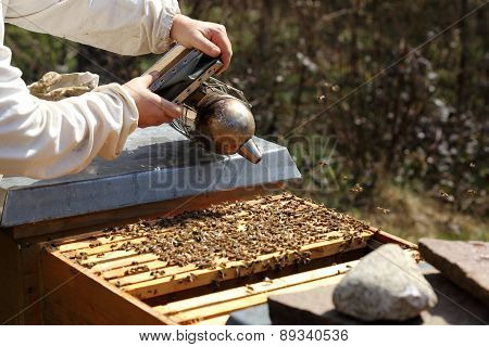 Working Bee Keeper With Smoker
