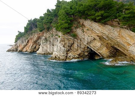 Beautiful Adriatic Sea Bay With Pines