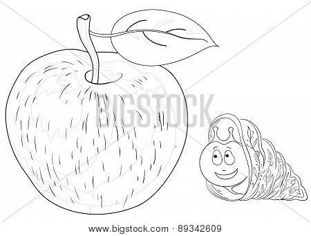 Snail on apple, contours