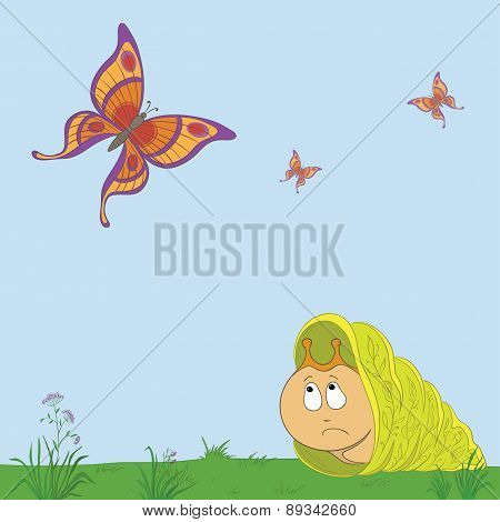 Snail and butterflies