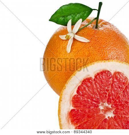 citrus grapefruit slice detail close up isolated on white background