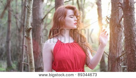 stylish Woman in red Dress Posing at the Woods , sunset