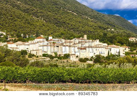 village Venterol with vineyard, Rhone-Alpes, France