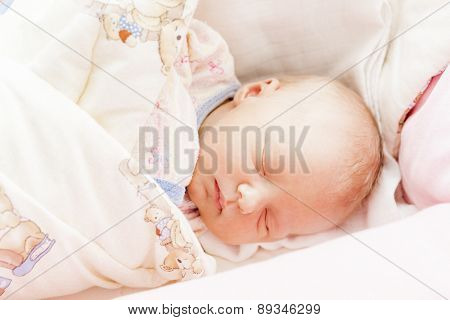 portrait of a newborn baby girl