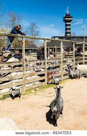 Copenhagen Zoological Garden