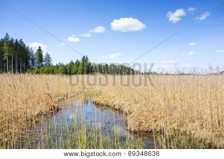 An image of the Ostersee at Iffeldorf in Bavaria Germany