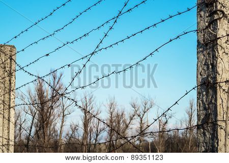 Post With Barbed Wire Against The Sky