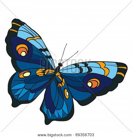 Blue Butterfly With Open Wings In A Top View.