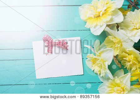 Fresh  Spring Yellow Narcissus  Flowers And Empty Tag