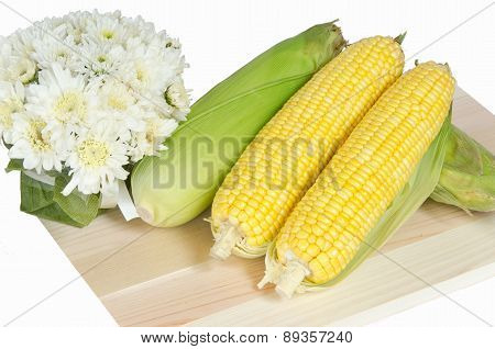 Yellow Sweet Corn With White Background