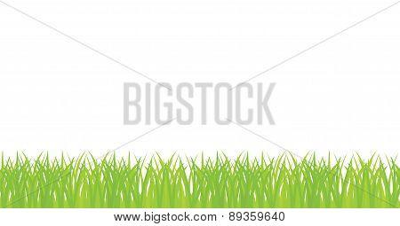 Vector seamless illustration of green grass
