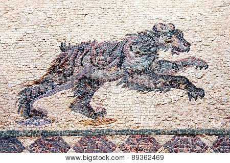 Leopard Roman mosaic