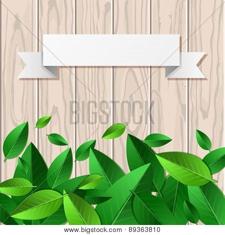Natural Wooden Texture Background, Green Leaves And White Paper Ribbon With Place For Text. Vector S