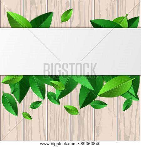 Natural Wooden Texture, Green Leaves And White Background With Place For Text. Vector Spring And Sum