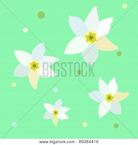 Figure narcissus flower