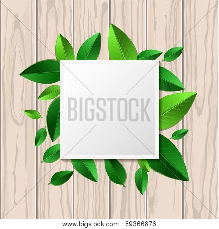 Natural Wooden Texture Background And Square Green Leaf Frame With Place For Text. Vector Spring And