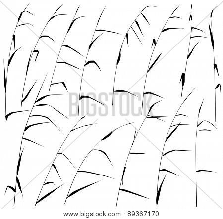 Set of eps8 editable vector silhouettes of reeds