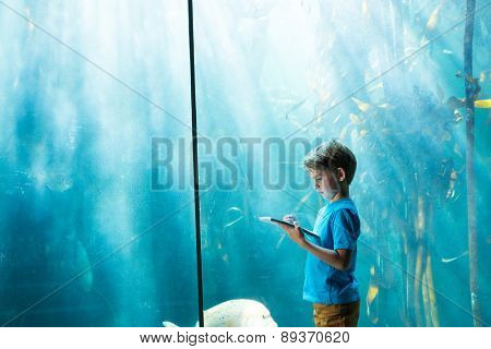 Young man drawing a fish in a illuminate tank at the aquarium