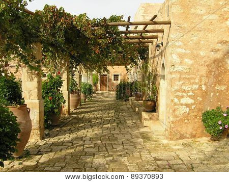 Rural Court With Colors In Pots And Dragging Oneself Along Plants