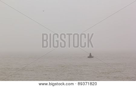 Navigational Buoy And Seagull In The Sea On The Morning Mist